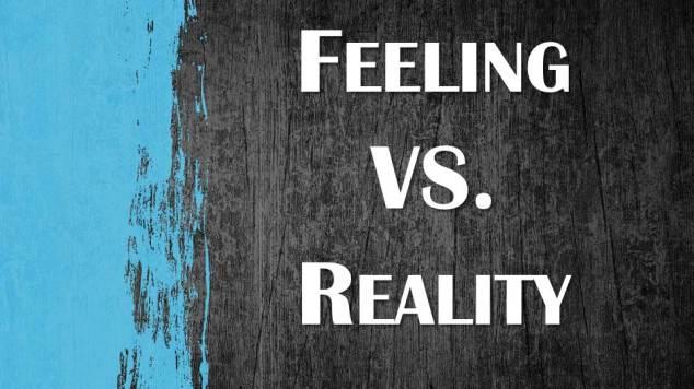 blog - feeling & reality