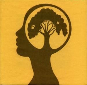 blog - tree knowledge